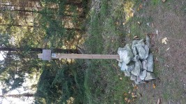 krivy-javor-18-10-11-02-30-46-wo53nuz0je.jpg