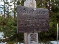 krivy-javor-21-04-10-06-32-00-wlw69s0t03.jpg